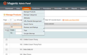 Magento Magento Admin Customer Menu